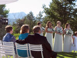 Guests & Bridesmaids