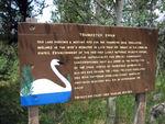 Swan Refuge at Indian Lake