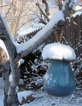 Bird Feeder in the snow