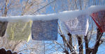Prayer flags covered in snow