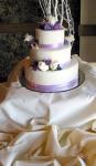 The Cake! Yum!